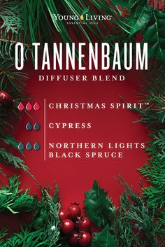 Young Living: 12 Days of Christmas Diffuser Blends! Essential Oils Christmas, My Essential Oils, Essential Oil Diffuser Blends, Young Living Essential Oils, Doterra, Belleza Natural, Diffuser Recipes, Diffusers, Christmas Recipes