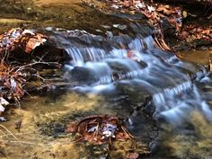 """Sam Calhoun on Instagram: """"Another Magical little cascade in the wilds of Bankhead National Forest #explore #getoutstayout  #optoutside #getoutide #adventuretime…"""""""