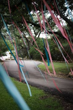 Ribbons in the trees. Different shades of wedding colors.