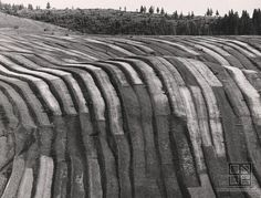 Martin Martinček: Liptovské variácie II.:1955 - 1975 Nostalgia, Landscape, Wood, Rarity, Homeland, Photography, Grass, Ethnic, Stripes