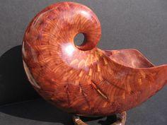 wooden shells.