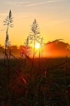 Sunrise in King's Dominion, Va.