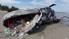 Atualmente o plástico é o maior contribuinte para a crise da poluição. Em um ano, nós geramos cerca de 160 milhões de toneladas de lixo plástico, só nos oceanos há 46 mil pedaços de plástico por quilômetros quadrados! Triste não é mesmo? Por isso, para te ajudar a ter um consumo mais sustentável preparamos um …