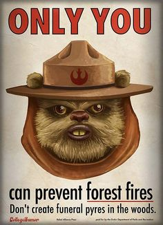 Only YOU can precent forest fires. #ewok #starwars