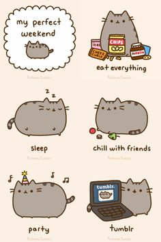 e621 :3 ambiguous_gender animated cat computer cute eating edit english_text feline food fur grey_fur happy human laptop mammal plain_background pusheen pusheen_corp simple_background sleeping text tumblr whiskers