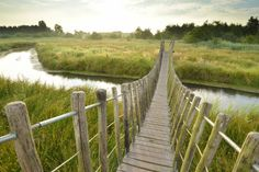 Hageven - De Plateaux, natuurgebied in Lommel/Neerpelt
