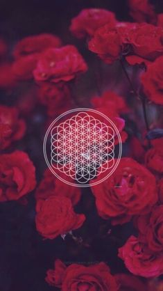 bring me the horizon, flowers, and wallpaper image