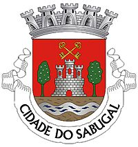Heraldry of the World Civic heraldry of Portugal - Brasões dos municípios Portugueses - City Logo, Mystery Of History, Transparent Stickers, Coat Of Arms, Sticker Design, Sell Your Art, My Arts, Art Prints, Stamps
