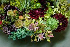 fall succulent centerpiece - Google Search