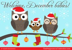 Welcome, #December babies! December's birthstone is the blue topaz or turquoise, and birth flower is the narcissus or poinsettia.