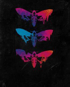Melting Moths - Fine Art Illustration Digital Psycadelic PRINT