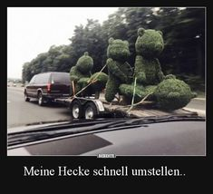 Quickly change my hedge . & Funny pictures, sayings, jokes, really funny The post Quickly change my hedge . Funny Couple Pictures, Epic Fail Pictures, Funny Photos, Funny Images, Humor Mexicano, Sarcastic Ecards, Funny Disney Shirts, Funny Today, Geek Humor