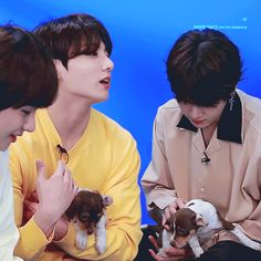 Jungkook and Yoongi with puppies Buzzfeed interview Passion gif