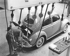 VW FACTORY 60`S - #VW Beetle