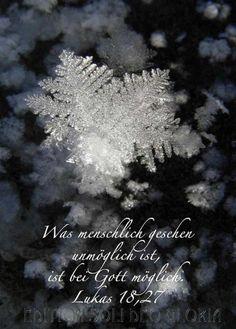 christliche Postkarte 9 - Lukas, Schnee, Winter, Frost, Kristall, Losung 2009 - Bibel a la Carte - Christliche Karten