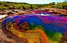 "Caño Cristales is a Colombian, is commonly called ""The River of Five Colors"" or ""The Liquid Rainbow"". It is the most beautiful river in the world. The most ideal time to visit Caño Cristales is from late July to early December. Beautiful Places To Visit, Oh The Places You'll Go, Cool Places To Visit, Places To Travel, Rainbow River, Foto Fantasy, Nature Photography, Travel Photography, Pink Lake"