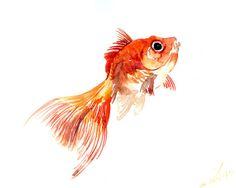 Goldfish, original watercolor painting, 10 X 8 in, Nursery art, kids wall art, sale on Etsy, $18.00