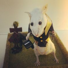 Funeral Director Mouse