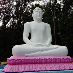 Visit: Tallest and Largest Buddha Statue {Princeton, New Jersey} Princeton New Jersey, Roadside Attractions, Worlds Largest, Fun, Exploring, Travel, Wings, Viajes
