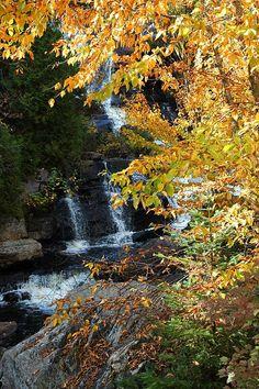 Mont Tremblant National Parc, Quebec, Canada Copyright: Richard Leonard