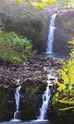 Misty Falls- fine art photography- near Hilo, Hawaii. ©2013 Patricia Griffin Brett embedded copyright