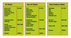 Plant Price Range