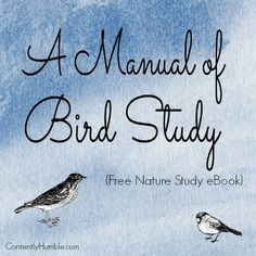Bird nature study printables learning about birds bird theme a manual of bird study free nature study ebook fandeluxe Images