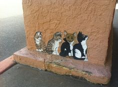 Arizona Has The Best Cat Street Art                                                                                                                                                                                 More