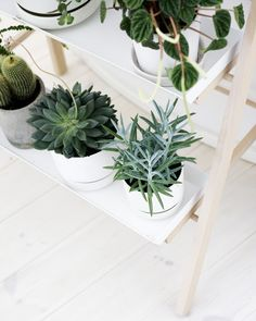 Matching white pots