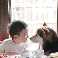 エル・オンラインでもおなじみの人犬コンビ、イッサくんと柴犬のマルのキュートなカットをお届け! (C)Sachiko Johnson 『えがおのゆくえ〜 Maru in Michigan〜』より #maruinmichigan