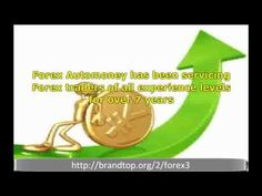 Top Guide Of Forex Trading | Forex Trading Online | Finding the Best Online Forex