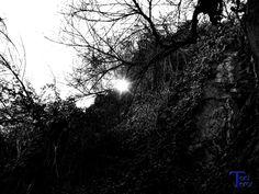 Unos rayos de sol by Toni Teror on 500px