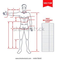 Free Printable Body Measurement Chart  Printable Body Measurement
