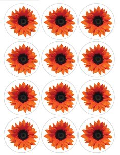 "Single Source Party Supply - 2.5"" Orange Sunflower Cupcake Edible Icing Image Toppers"