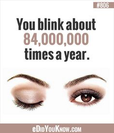 Did you know that you blink about times a year? The More You Know, Good To Know, Did You Know, Wtf Fun Facts, Funny Facts, Random Facts, Science Facts, Teaching Science, Eye Facts