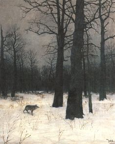 Зимой в лесу. Волк
