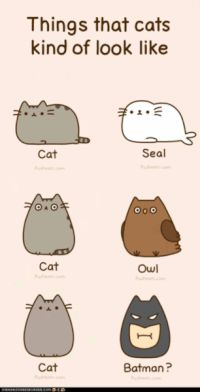 =(^x^)= Funny Drawings, Cute Animal Drawings, Cartoon Drawings, Awesome Drawings, Cartoon Images, Gato Pusheen, Cute Fat Cats, Chat Kawaii, Image Chat