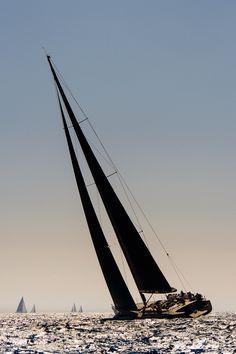 Voiles de St Tropez 2012 - By Patrick Le Galloudec *