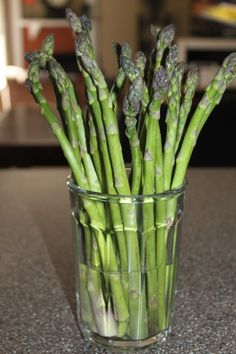 How To Grow Asparagus. An Incredible Perennial Crop!