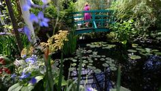 Monet's garden replanted in the Bronx: The American take on Claude Monet's garden has already attracted over 100,000 visitors since it opened at the New York Botanical Garden in May.