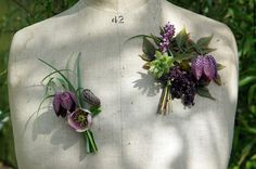Seasonal spring wedding corsages with snake's head fritillary, hellebores and sempervivum from www.foragefor.co.uk