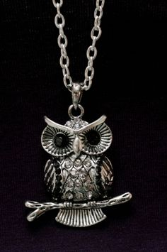 "That's my ""dear"" owl necklace ; Owl Necklace, Chain, Accessories, Jewelry, Jewlery, Jewerly, Necklaces, Schmuck, Jewels"