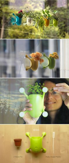 Livi uses 3D printing technology and recycled materials to produce a colorful planter with an insect-like body and legs that adheres to windows.