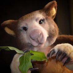tree kangaroo by Julia Kiryukhova - Bear Pile Panda Bear, Polar Bear, Tropical Forest, Wombat, Orangutan, Sheep Wool, Felt Toys, Chipmunks, Guinea Pigs