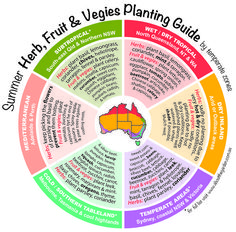 What to PLANT Now: Summer Herb, Fruit & Vegies Planting Guide by temperature zones