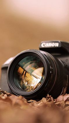 Canon Camera Macro Fall Leaves #iPhone #5s #wallpaper