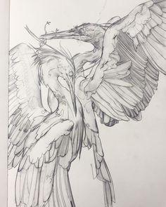 Art inspiration and artwork by Eleeza (Eliza Ivanova) # Eleeza – Art Drawing Tips Animal Sketches, Art Drawings Sketches, Animal Drawings, Artwork Drawings, Ink Illustrations, Illustration Art, Sketch Inspiration, Bird Art, Art Inspo