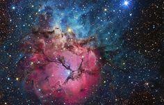 Cosmic nurseries