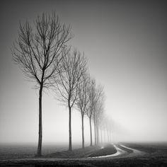 Sinuosity Ii, photography by Pierre Pellegrini