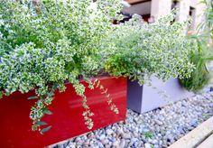 Porszórt acél virágágyások